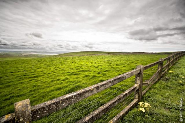 Fotografía de paisaje irlandés de verde valle cortado por una valla