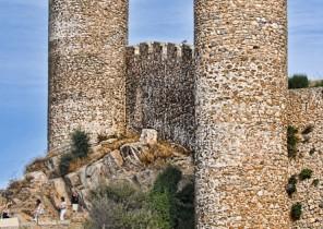 Fotografía de doso torres de castillo